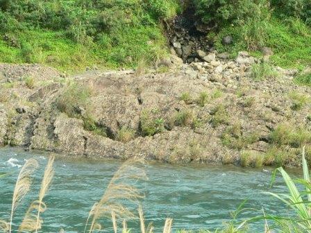 照片2:大壩下游河道復育樣區