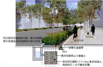人行及自行車道側滲透式帶狀植栽槽剖面示意圖