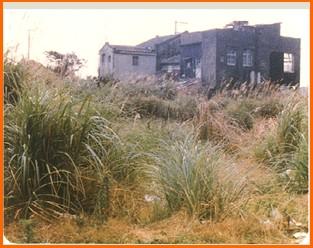 木柵區第一期重劃前,建物窳陋,景觀不佳之一