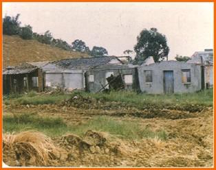 木柵區第一期重劃前,建物窳陋,景觀不佳之二