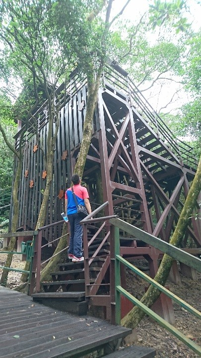 104年度「登山步道改善及維護工程」(第一期)