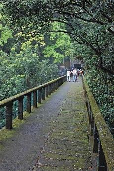 草山水管橋的橋面設計大有玄機