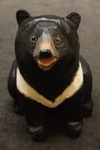 神秘客:台湾黑熊
