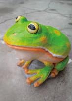 神秘客:诸罗树蛙