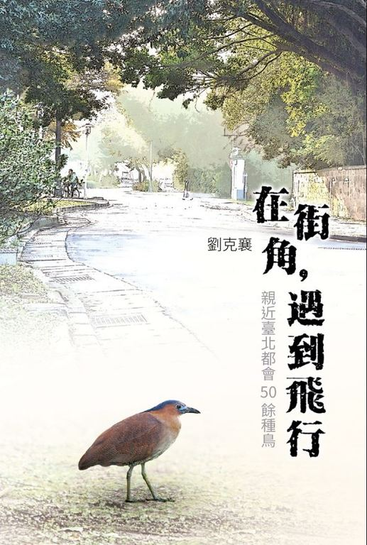 Encounters with Avians on City Street Corners