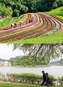 Dagouxi Ecology and Water-Control Park; Bihu Park