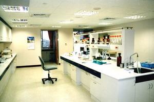 肝炎實驗室