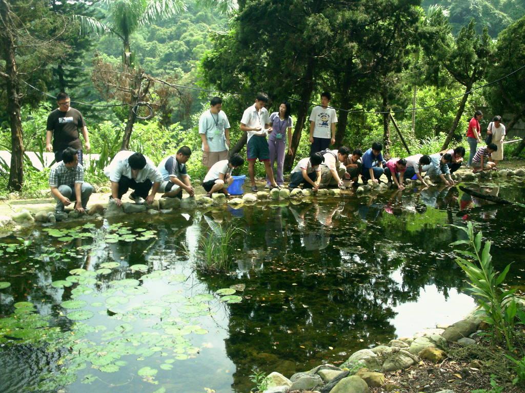 生態醫院─生態池