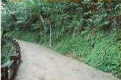 仙跡岩步道
