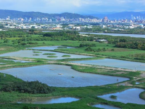 保育核心區的濕地環境是水鳥棲息的區域