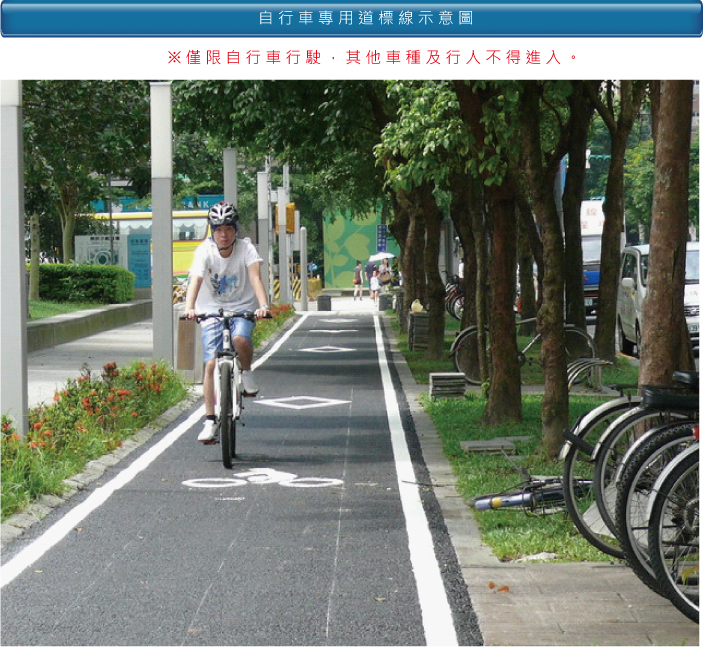 自行車專用道標線示意圖