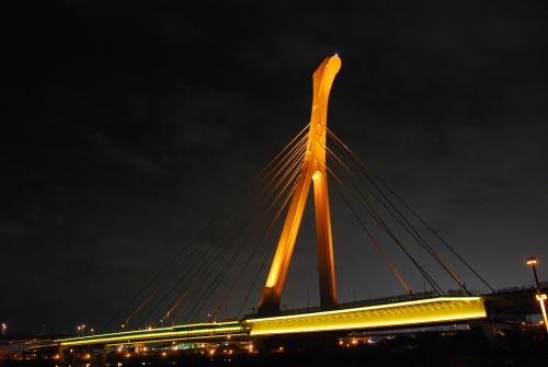 Steel structural bridge towers