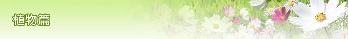 植物篇-banner
