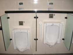 Toilet Facilities for Disabled and Elderly Passengers