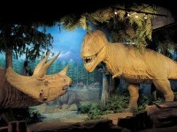 Prehistoric animal area