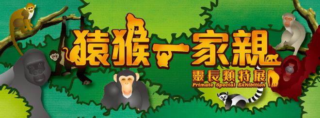 猿猴一家親-靈長類特展