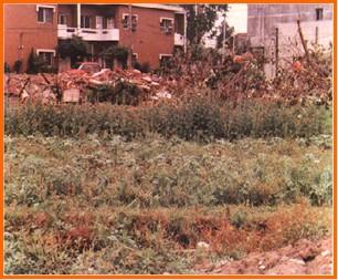 中山區第五期重劃前,雜草叢生,廢棄物堆積之二