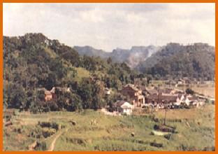內湖區第一期重劃前,大部分為農地,低矮房舍座落其間之一
