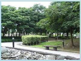 松山區第二期重劃後,市民廣場綠地,提供民眾散步休閒好去處