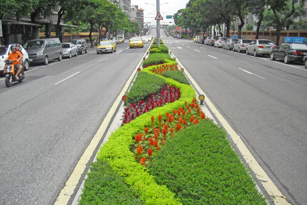 敦煌路中央分隔島以流線型灌木搭配草花營造活潑生命力