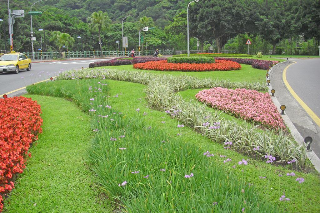 自強隧道中央分隔島以高低層次鮮明之紫嬌花與灌木互相搭配塑造熱鬧的道路景觀