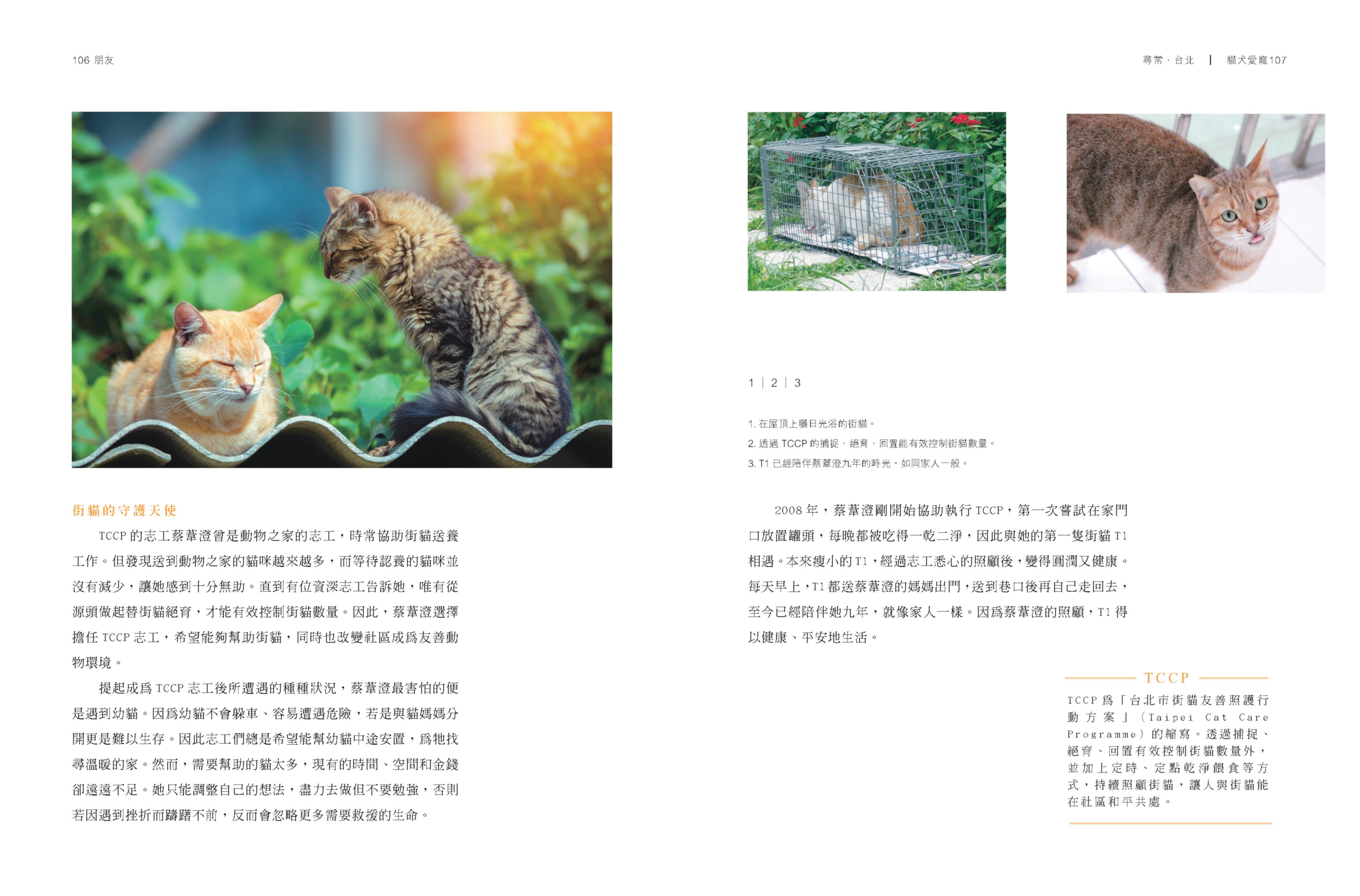 內頁縮圖_b10.jpg