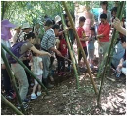 士林綠竹筍農園體驗活動