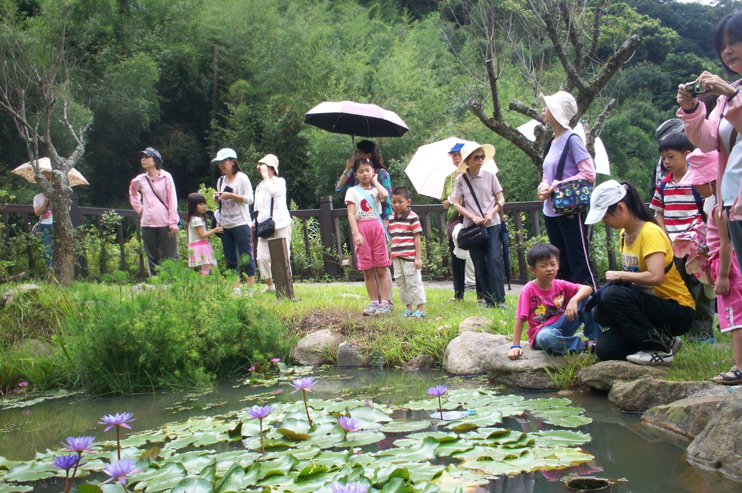白石森活休閒農場生態池