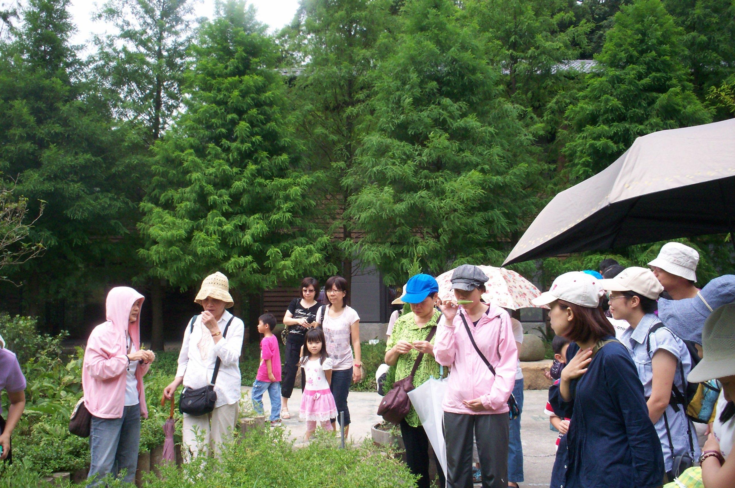 白石森活休閒農場香草植物解說