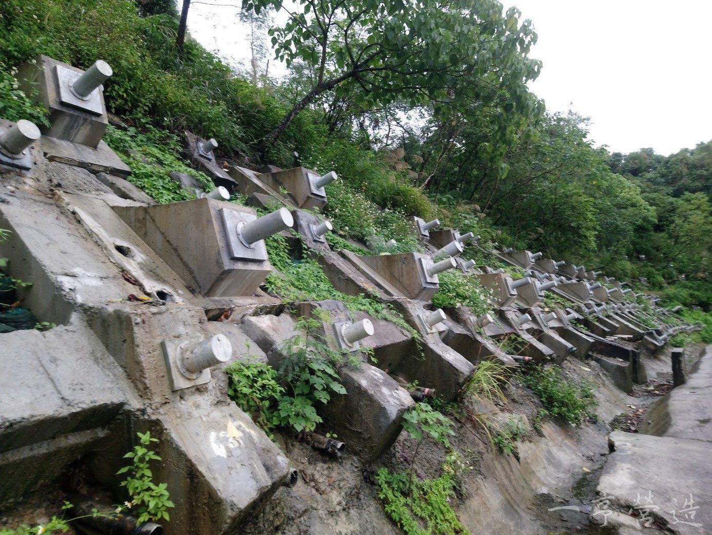 信義快速道路文山隧道南口邊坡整治後情形