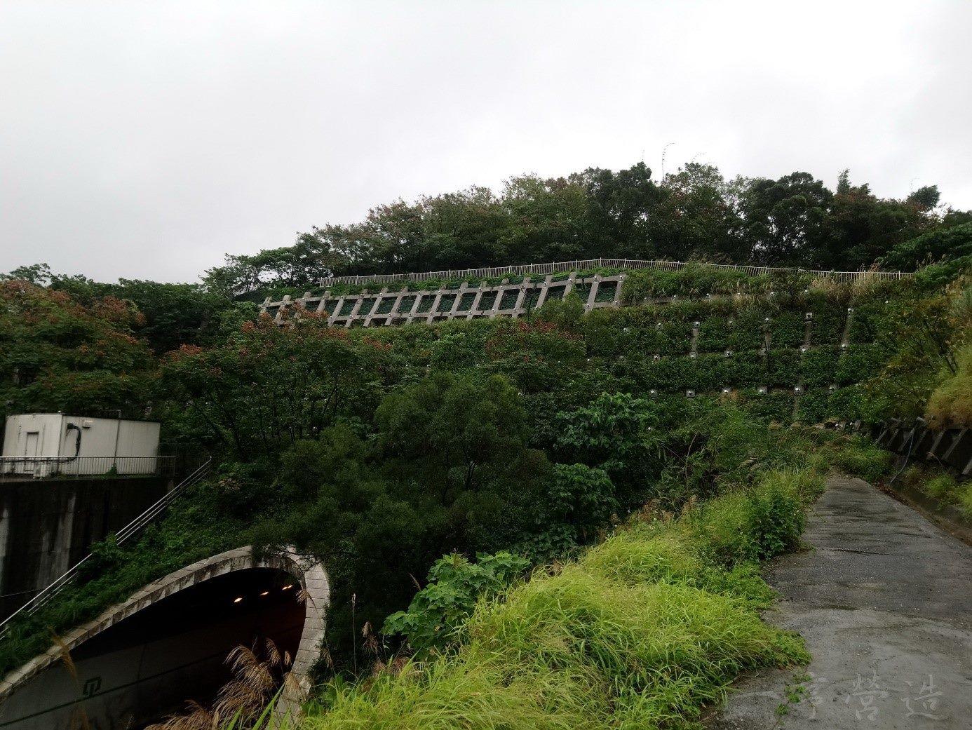 信義快速道路象山隧道北口邊坡整治後情形