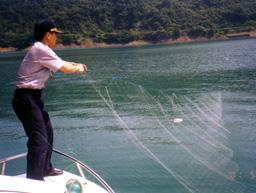 取締非法網魚照片