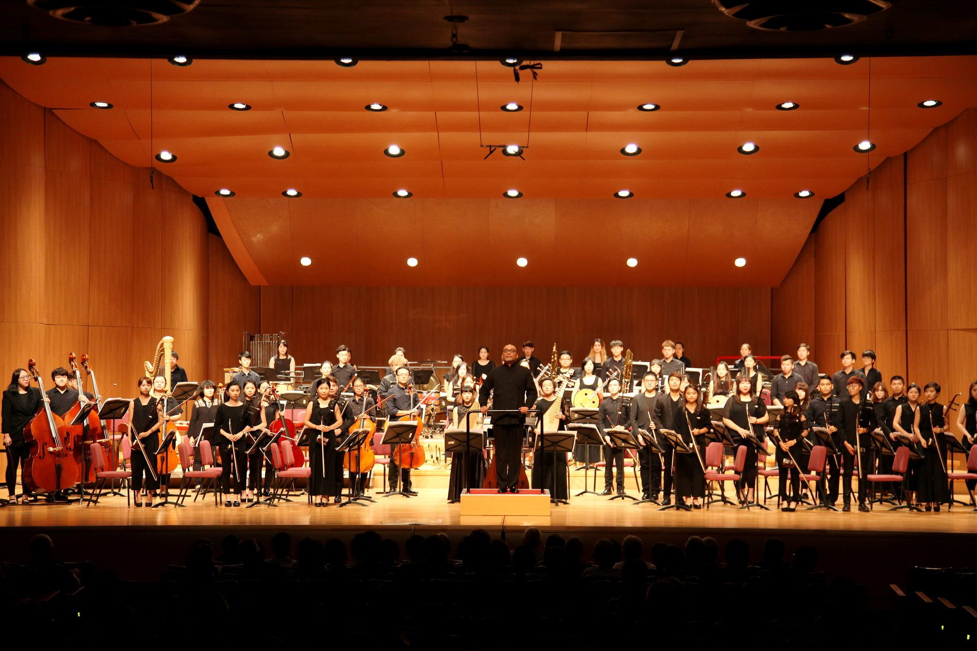 TCO Academy Orchestra Img