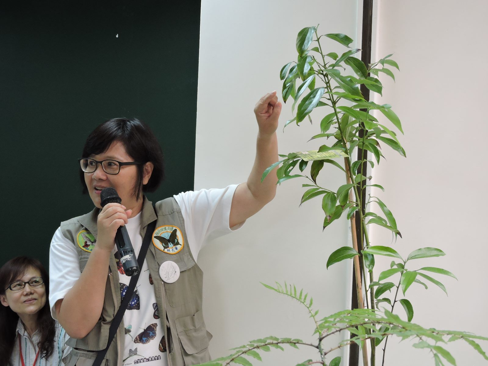 蝴蝶協會胡文華理事長詳細解說蝴蝶食草土肉桂
