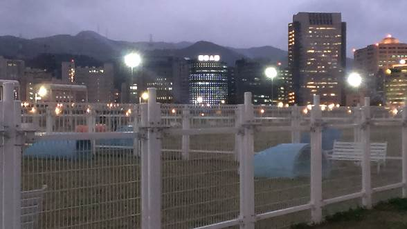 迎風狗運動公園夜景