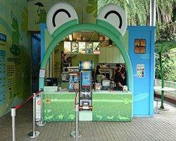 兩棲爬蟲動物館(青蛙咖啡)