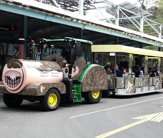 「穿山甲、箭毒蛙正趴趴Go?動物園嶄新列車載客囉!