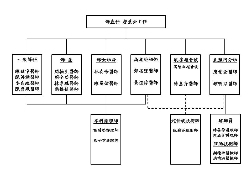 婦產科組織圖