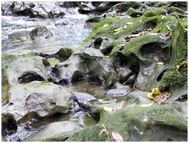 右邊:溪床長時間沖刷形成壺穴地形
