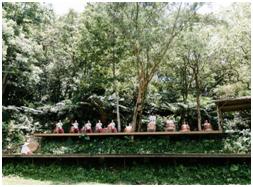 茶葉文化活動