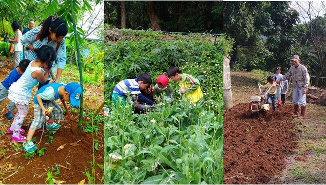 二崎生態休閒農場小小農夫食農教學活動