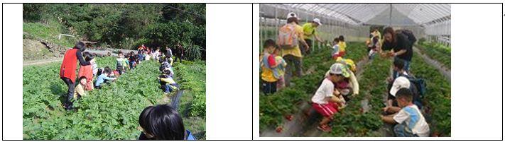 清香休閒農場小小農夫食農教學活動