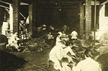 In earlier times, tea processing required a lot of elbow grease.