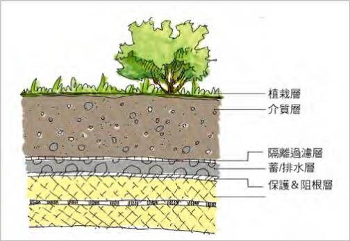 庭園型綠屋頂說明