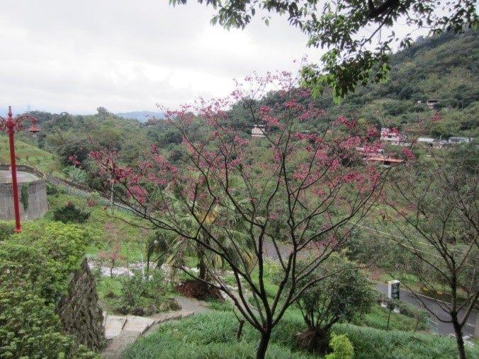 景觀休閒農場