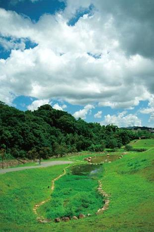 營造濕地生態環境