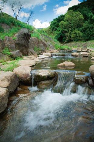 生態工法整治河道