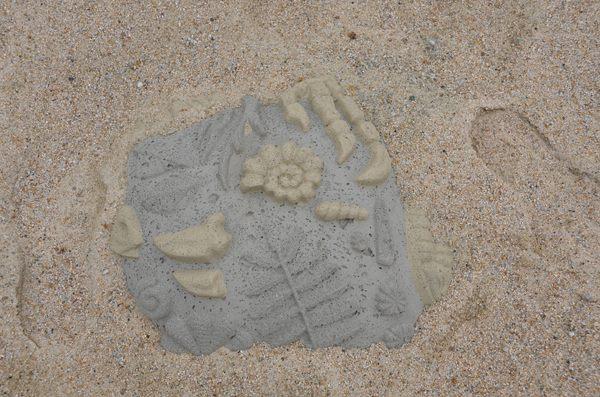 考古恐龍化石