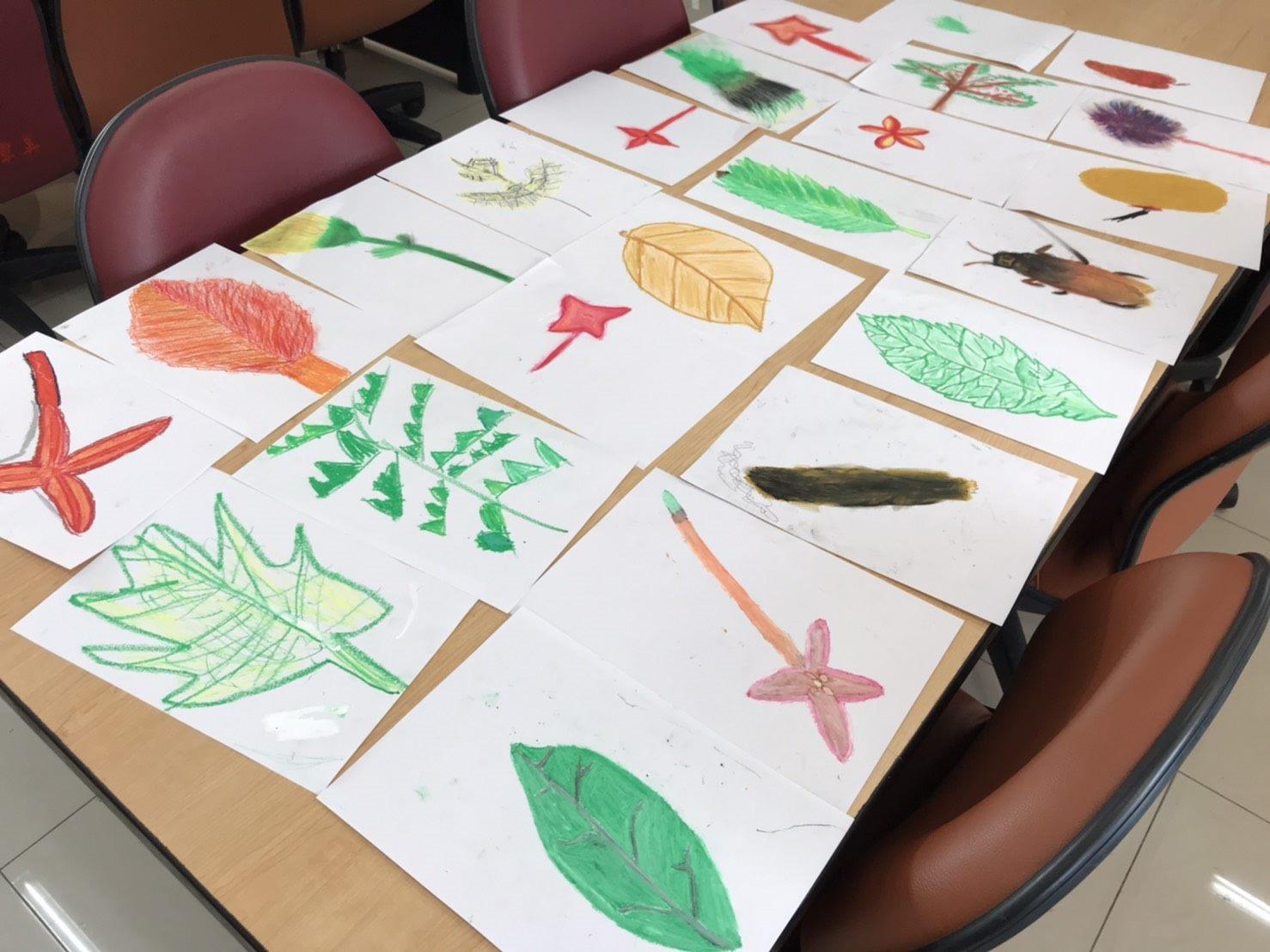 小朋友彩繪植物